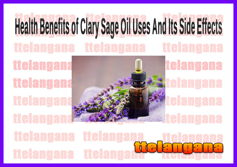 Health Benefits of Clary Sage Oil Uses And Its Side Effects