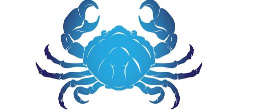 Yengeç Burcu | Cancer Horoscope
