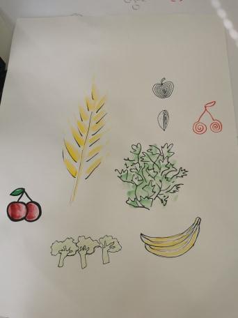 Kasvis- ja hedelmäpiirros