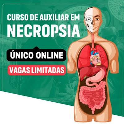Curso Online de Enfermagem em Auxiliar de Necropsia