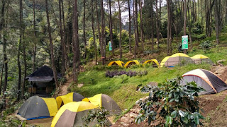 CAMP OUTBOUND KAMPUNG RIMBA