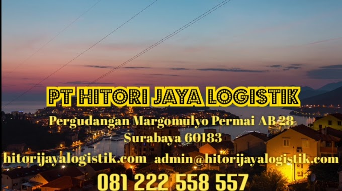 Ekspedisi logistik murah terbaik Papua