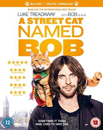 A Street Cat Named Bob 2016 English 480p BRRip 300MB ESubs