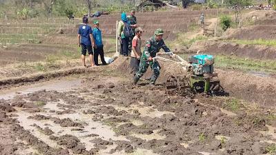 Koramil 04/Windusari Terus Dampingi Gerakan Percepatan Olah Tanah