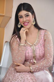 Actress Aditi Singh Latest Stills in Designer Dress at Guppedantha Prema Pressmeet 0024.jpg