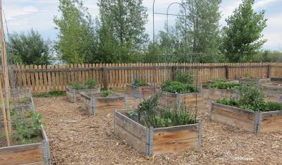 Community Garden, High Plains Environmental Center, Loveland, CO
