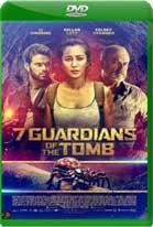 Guardianes de la Tumba (2018) DVDRip Castellano