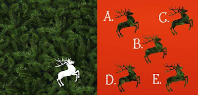 Figure: Christmas pine-cones! Which reindeer cut-out would complete this picture?