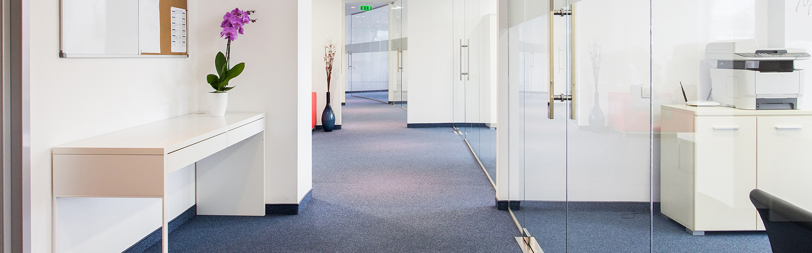 Five Key Benefits Of Hiring A Professional Carpet Cleaning