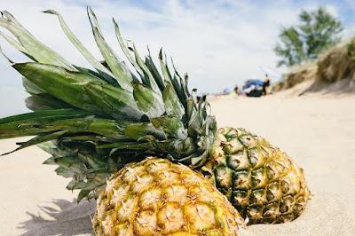 Maruthuva kurippu in tamil : Patti vaithiyam in tamil pineapple magathuvam