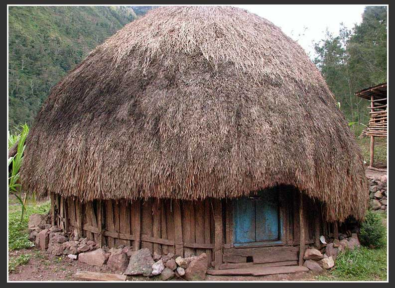Gambar Rumah Adat Papua Rumah Adat Indonesia