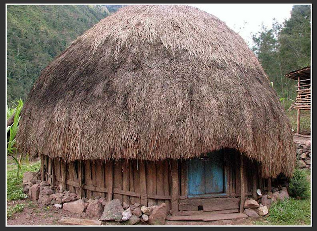 Gambar Rumah adat papua barat