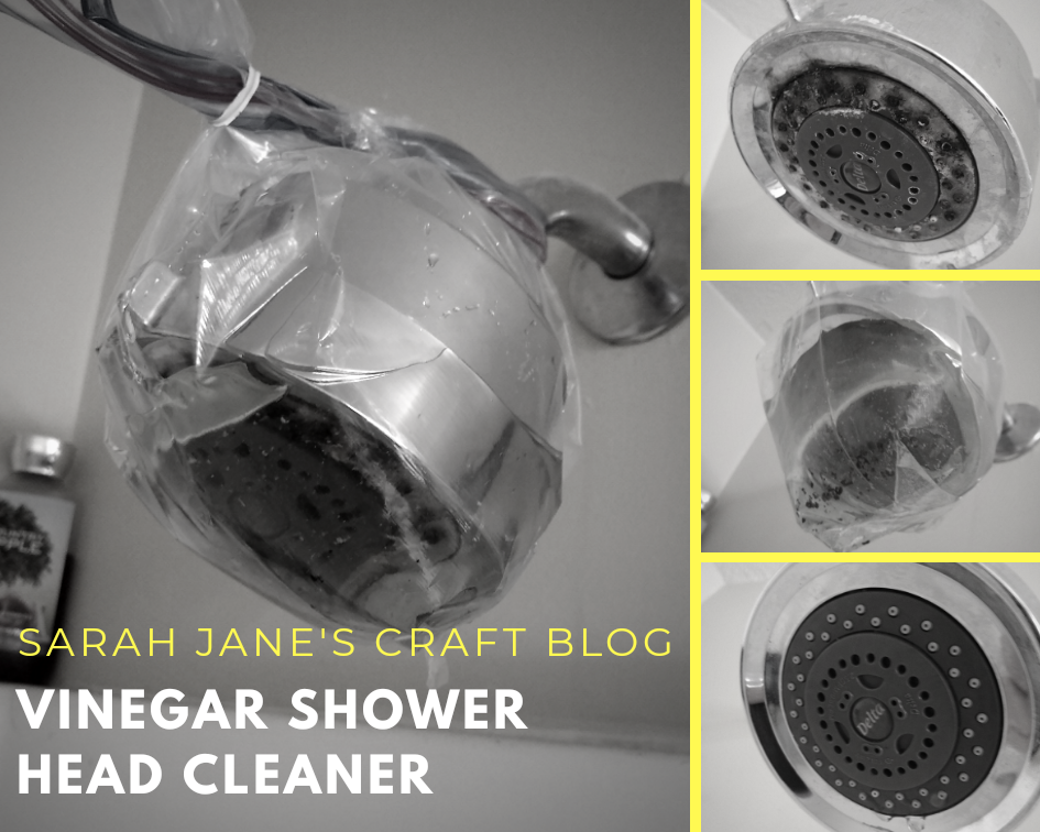 Sarah Jane S Craft Blog Tested Life Hack Diy Shower Head Cleaner