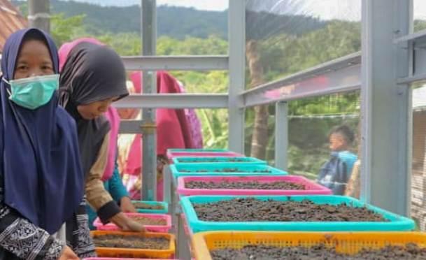 Bupati Tinjau Dua Desa Kawasan Rumah Pangan Lestari Di Kecamatan Bontoharu