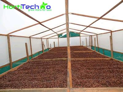Solar drier in Kenya , Fruits solar dries, Mango solar drier