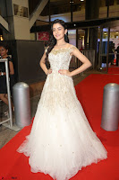 Rukshar Mir designer Anarkali Gown at 64th Jio Filmfare Awards South  2017 ~  Exclusive 119.JPG
