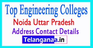 Top Engineering Colleges in Noida Uttar Pradesh
