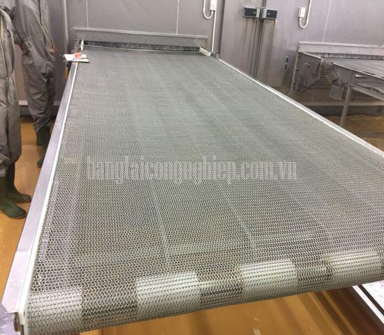 Băng tải lưới inox trong một hệ thống cấp đông