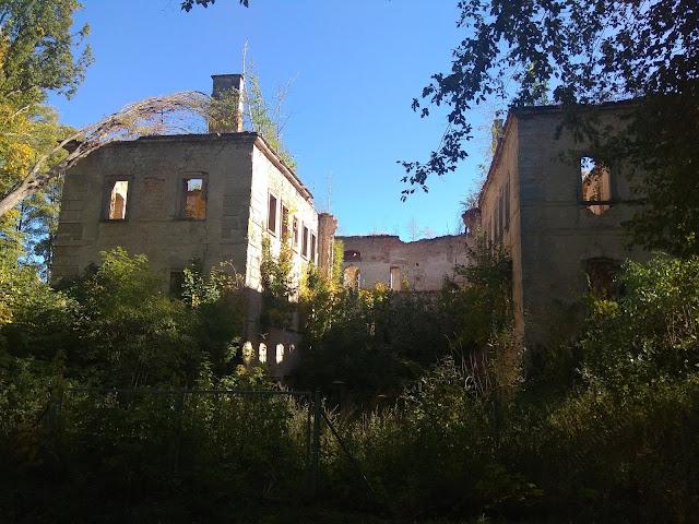 Ruiny Pałacu w Skale