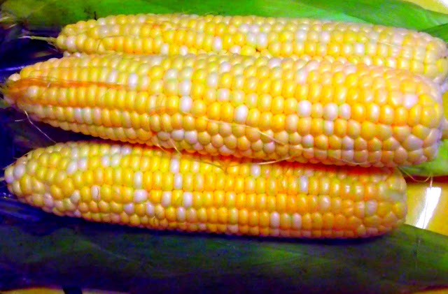 Origins and History of Sweet Corn