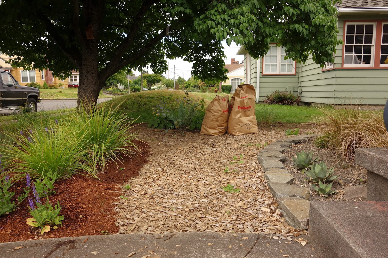 Just a girl with a hammer: We are officially no-mow in the ... on No Grass Backyard  id=43885
