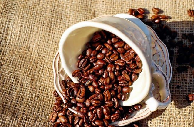 fakta kopi yang ternyata jadi komoditi terbesar