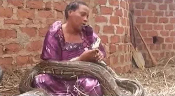 Woman Caught Breastfeeding A Huge Snake (Pictures)