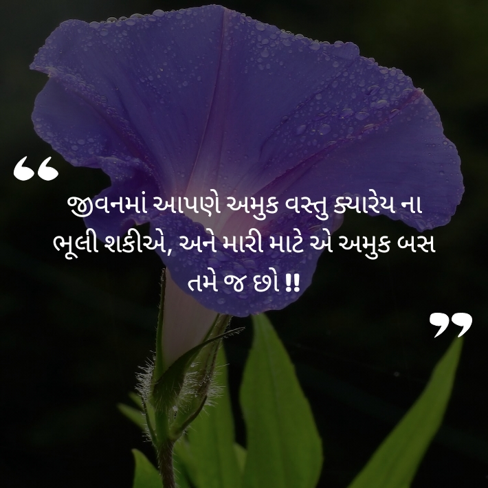 Latest gujarati status