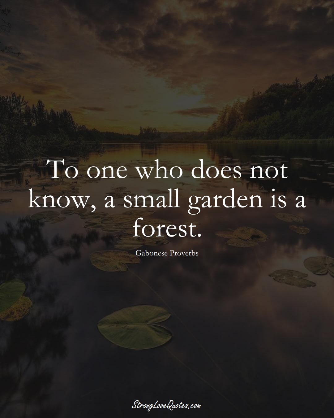 To one who does not know, a small garden is a forest. (Gabonese Sayings);  #AfricanSayings
