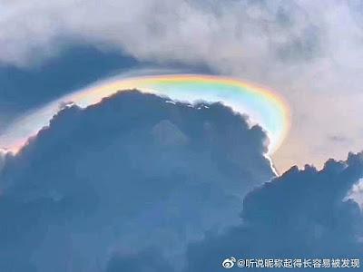 Кобра: Цветок Жизни Guangzhou2019.6.28