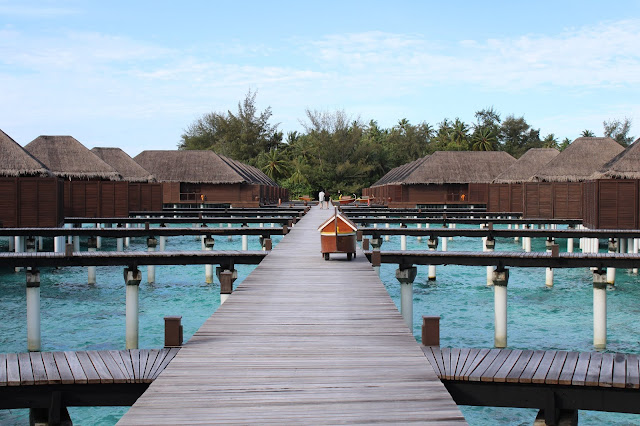 Vacation.Beaches.Palm Tree.Resort.Island resort.Water.Sun Shine,maldives hotel under water,Maldives hotel under water, underwater hotels in the Maldives,  underwater hotels Maldives, resorts the Maldives, hotels of Maldives, vacation in Maldives, vacationing in the Maldives, Maldives for vacation, vacation at Maldives, vacation at the Maldives, vacation in the Maldives, vacation Maldives, vacation to the Maldives, vacations Maldives, where Maldives, Maldives at where