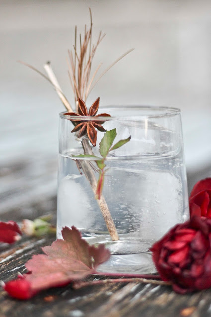diy,comment-faire,garniture-gin-tonic,madame-gin