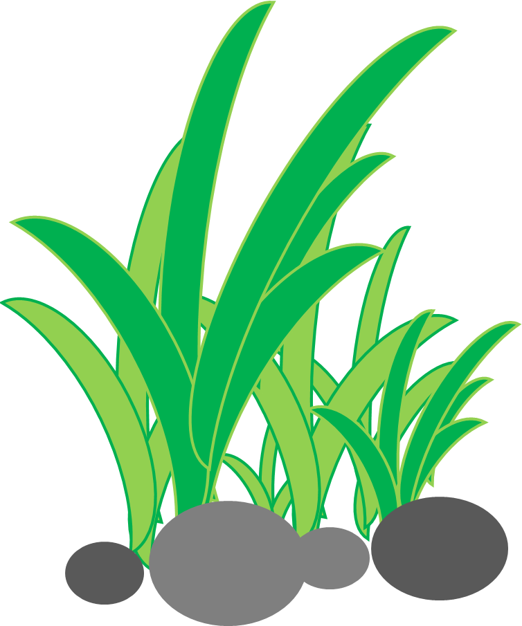 Cara Membuat Rumput Di Powerpoint Sipowerpoint