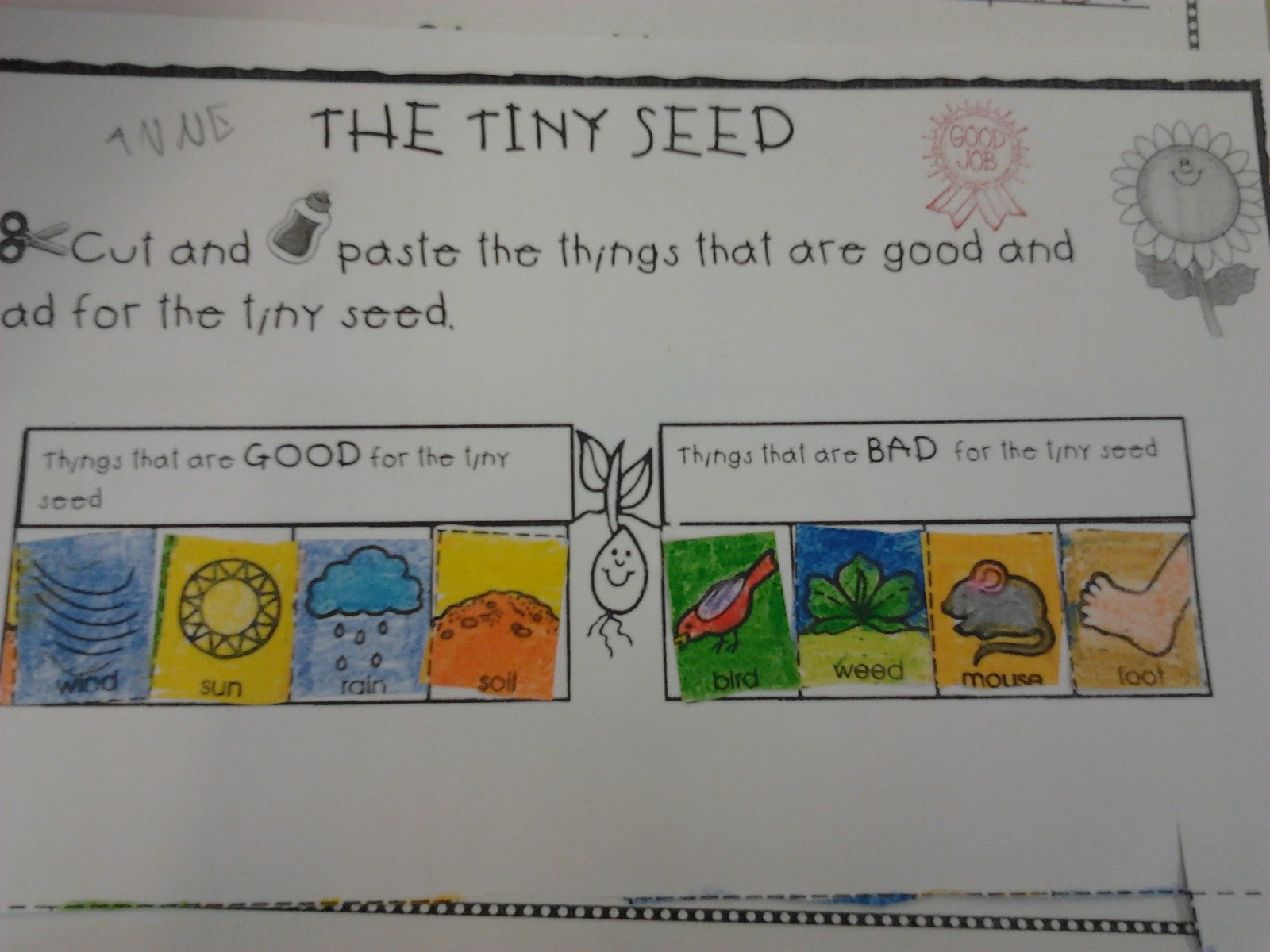 The Teaching Express Oh Say Can You Seed