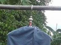 Manfaat Mandi Sauna Untuk Burung Cendet