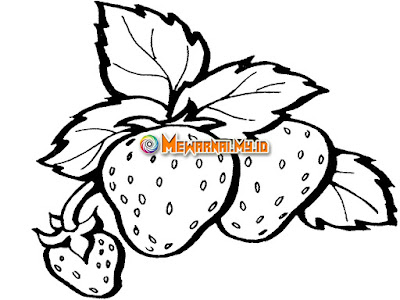 Mewarnai Gambar Buah Strawberry