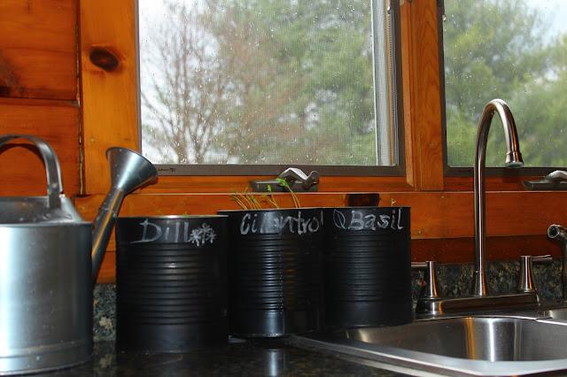 IMG 6727 - DIY Herb Garden