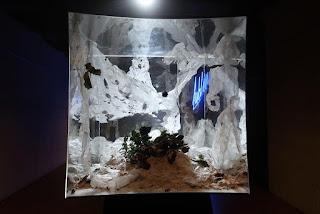 KASANDRA wystawa studencka wystawa prac studentów polskich uczelni artystycznych festiwal scenografii i kostiumów scena w budowie spotkania kultur
