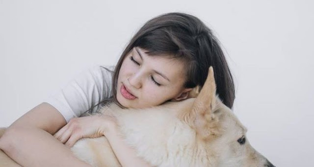 Pet Therapy: Πώς τα ζώα και οι άνθρωποι θεραπεύουν ο ένας τον άλλο