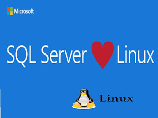 linux için windows sql server