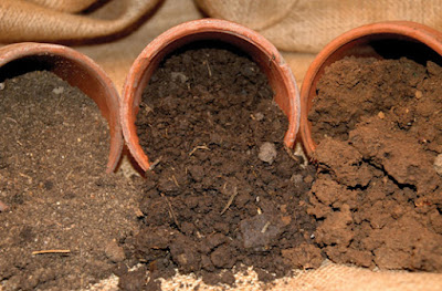 type of soil
