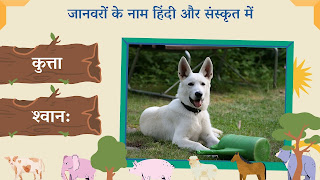 Dog name in sanskrit and hindi with images