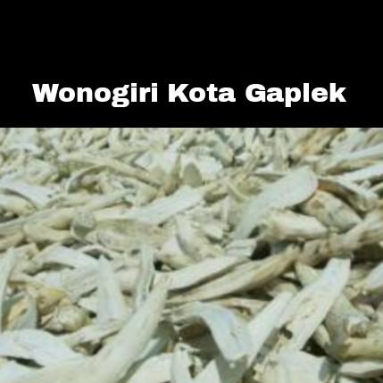 ROTI GAPLEK INAGIRI DARI KOTA GAPLEK - INAGIRI