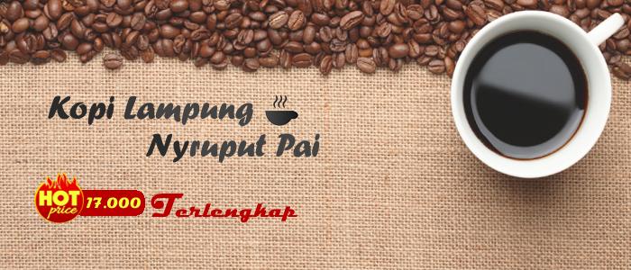 Kopi Lampung