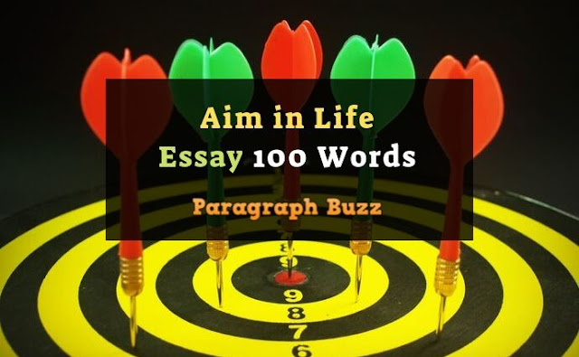 Aim in Life Essay 100 Words