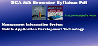BCA 8th Semester Syllabus Pdf