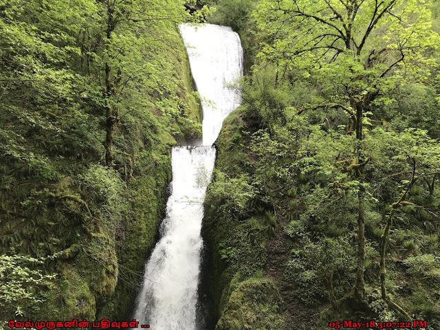 Bridal Veil Falls Columbia River
