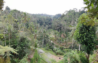 Isla de Bali, Gunung Kawi.