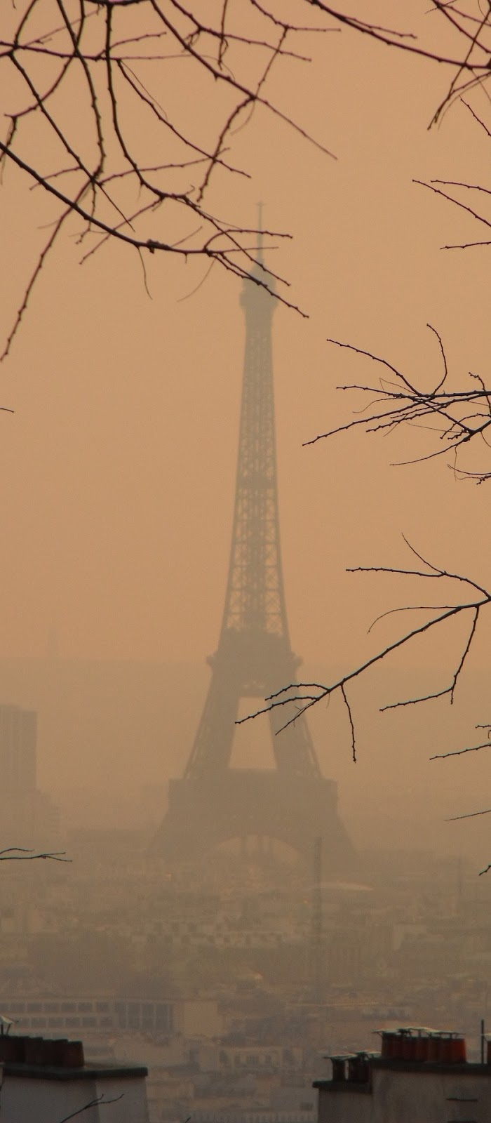 Eiffel Tower covered in smog.