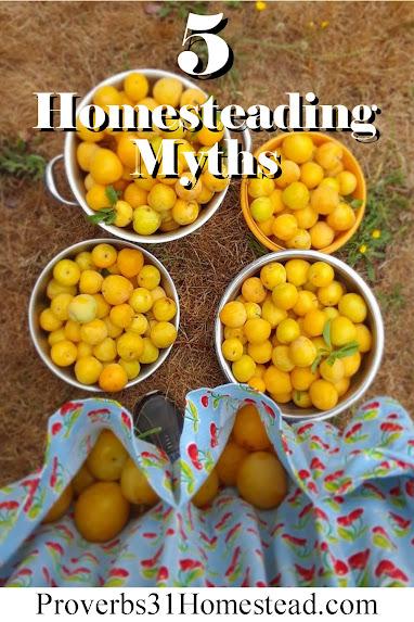 5 Homesteading Myths